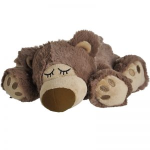 djur - sovande björn - brun
